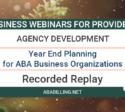 Webinar: Year End Planning for ABA Business Organizations